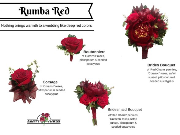 Rumba-Red-JPEG